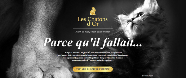 Les_Chatons_d_Or_2013.png