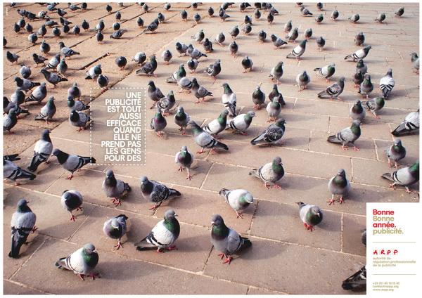 arpp-bonne-publicite-pigeon-par-josiane